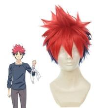 Shokugeki No Soma Yukihira Souma Cosplay Wig for Men Boys 30cm Short Straight Heat Resistant Synthetic Hair Blue Red Mixed