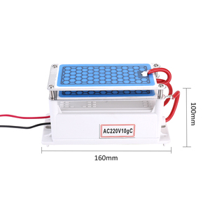Image 3 - Portable 10g/h Ceramic Ozone Generator Double Integrated Plate Ozonizer Water Air Purifier For Chemical Factory