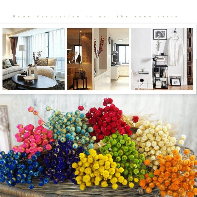 50 unids / lote decoración para el hogar ramo de flores secas flores - Para fiestas y celebraciones - foto 3