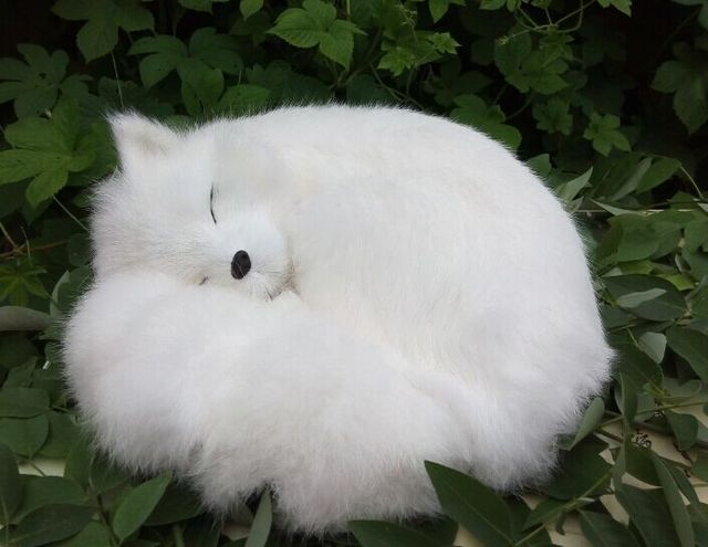 New Big Simulation White Fox Toy Beautiful Resin Amp Fur Fox