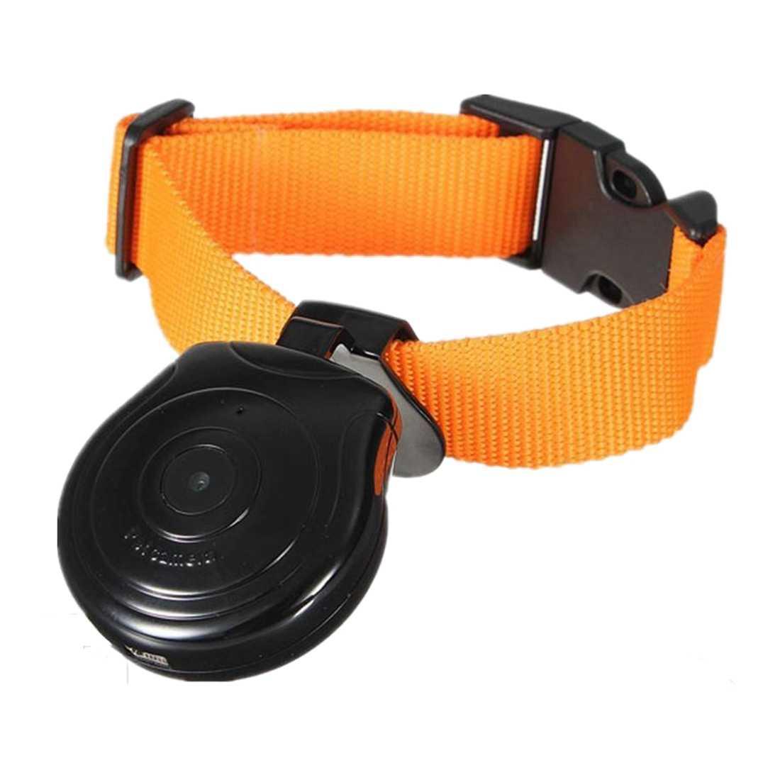 IALJ Топ Мини Цифровая камера видео запись камера видеорегистратор видео рекордер ошейник для собаки кошки