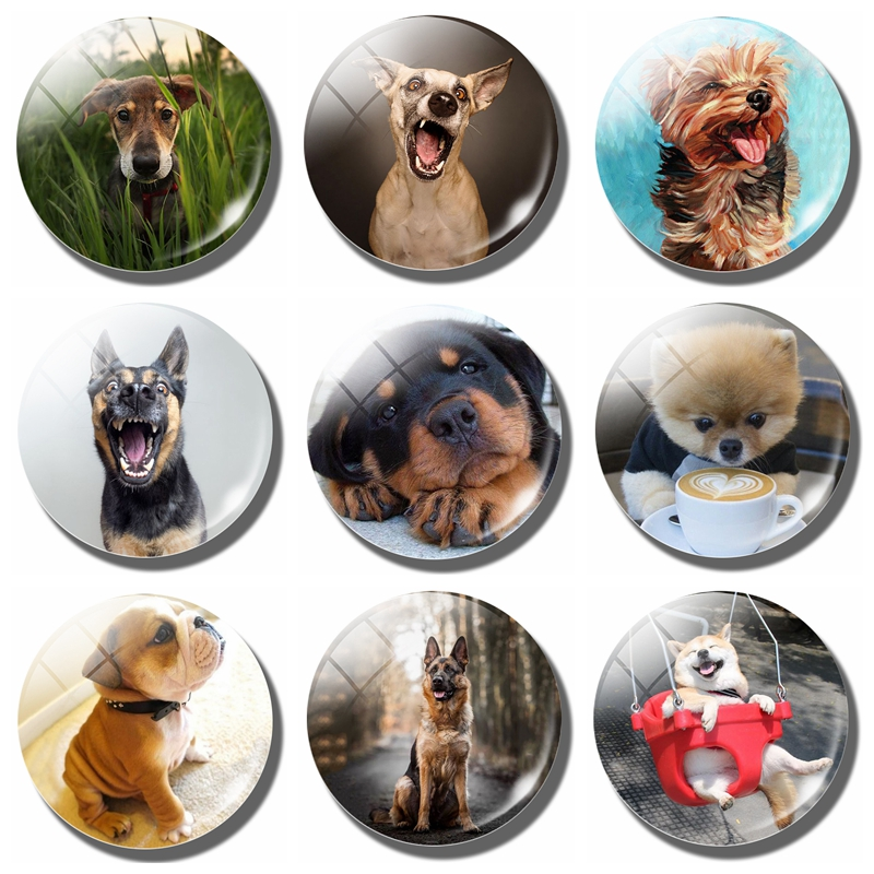 Lovely Cute Dog 30MM Magnetic Refrigerator Stickers Funny Dog Pet Lover Gift Glass Cabochon Note Holder Fridge Magnet Home Decor