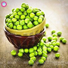 20pcs Green Pea Seeds Organic Super Sweet Arrow Bean Vegetables Seeds Organically Grown Heirloom Herb For Garden Plants