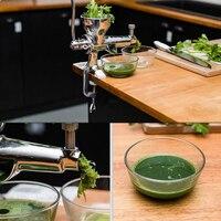 Mano Wheatgrass Exprimidor de Acero inoxidable manual de La Máquina de Jugo Lento Barrena Ideal para Frutas, verduras,, orange juice extractor