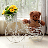 Sitting room interior furnishing articles florist. Potted aircraft plant