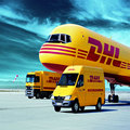 extra fee for More density/  DHL/ TNT/ Fedex fast shipping,will receive it 4-7 working days