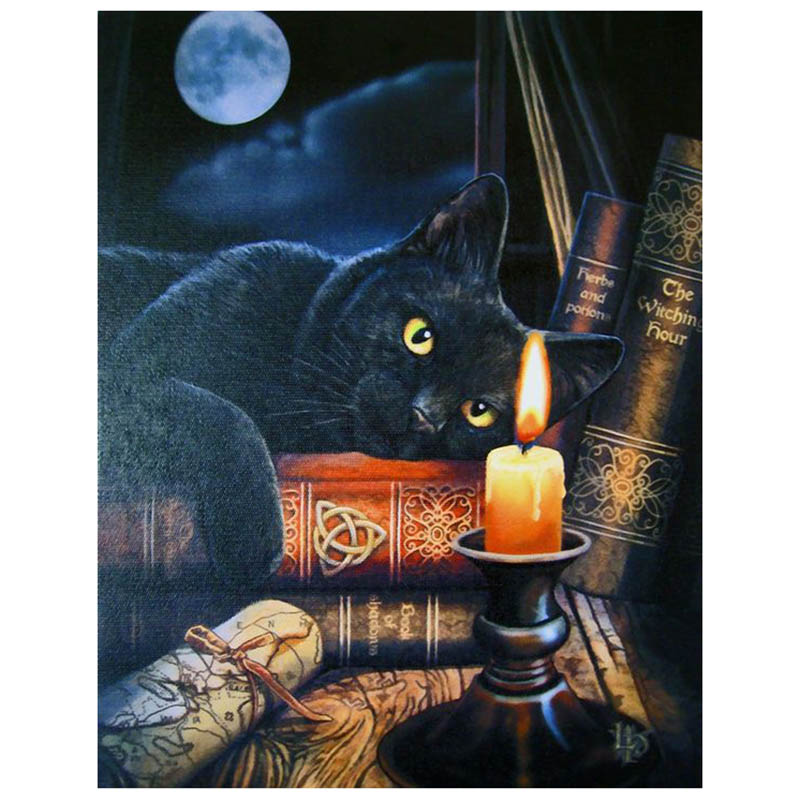 5D Diy Cat book candle diamond painting crystal Painting diamonds decorative diy embroidery kits