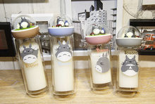 Cartoon Totoro Double glass cup Heat-resisting Lovers&Student Anti scald Water Cup creative microlandschaft transparent cup(China)