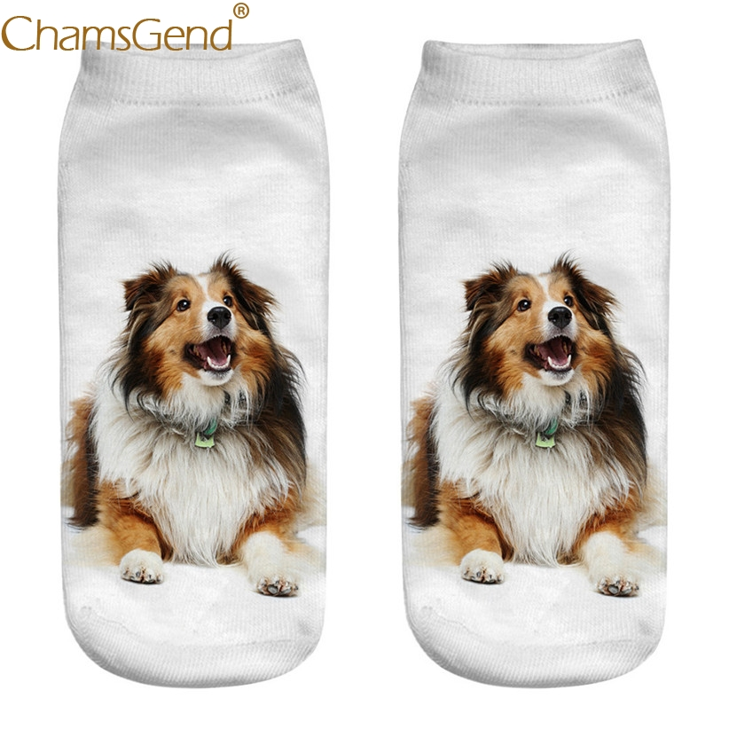 Chamsgend Women Girls Casual 3D Shetland sheepdog Print Cotton   Socks   80228