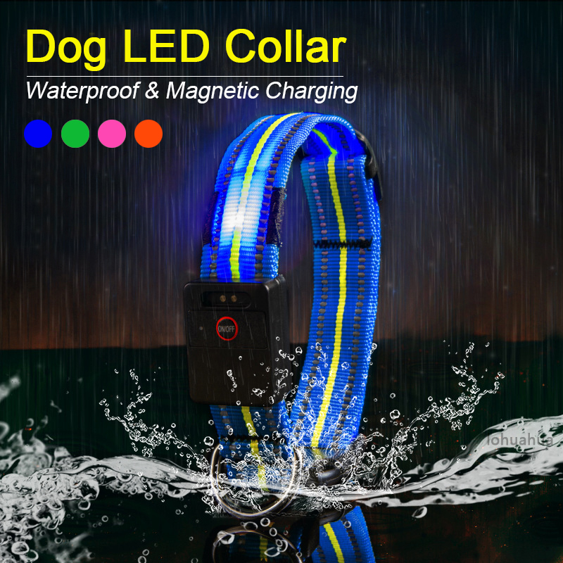 Waterproof LED Dog Collar Original Magnetic Charging Glowing Collar For Dogs Anti Lost Safe Luminous Dog Collars Accessories in Collars from Home Garden