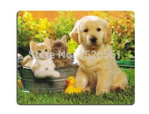 imagen de perro - HD