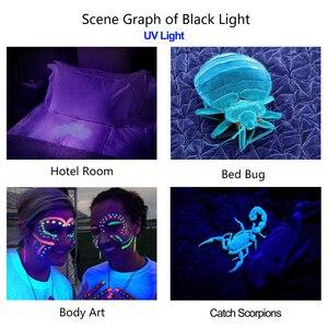 Image 5 - كشاف ضوئي LED يعمل بالأشعة فوق البنفسجية مكون من 5 أوضاع مع خاصية التكبير مصباح أسود صغير يعمل بالأشعة فوق البنفسجية كاشف بقع البول للحيوانات الأليفة كاشف بقع العقرب