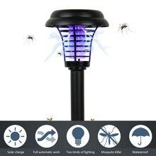 Insects Achetez Des Solar Light Promotion D9IHWE2Y