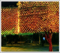 220V Multicolour 320LEDS 3m(W)*2m(H)LED Net String Xmas Cristmas Decoration  Lights Free Shipping