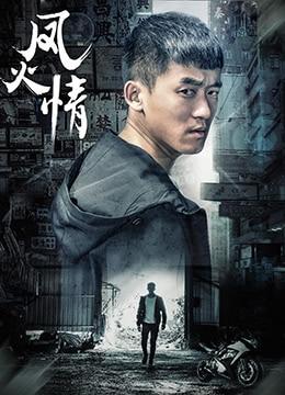 《凤火情》2017年中国大陆剧情,动作,爱情电影在线观看