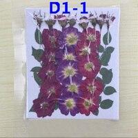 Các loại Ép Khô Rose Hoa + Leaf Đối Wedding Party Home Mặt Dây Chuyền Vòng Cổ Trang Sức Điện Thoại Trường Hợp Craft Phụ Kiện TỰ LÀM D1-1