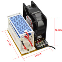 220v 10g Double Ceramic Plate Ozone Generator Portable Ozone Machine Ozone Sterilizer With Fan Heat Dissipation