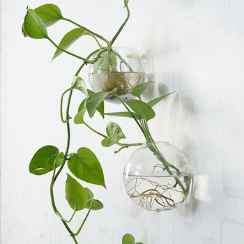 Wall Hanging Putaran Bentuk Kaca Wadah Hidroponik Vas Bunga lobak hijau Tanaman Air Tanaman Tank Pernikahan Dekorasi Rumah
