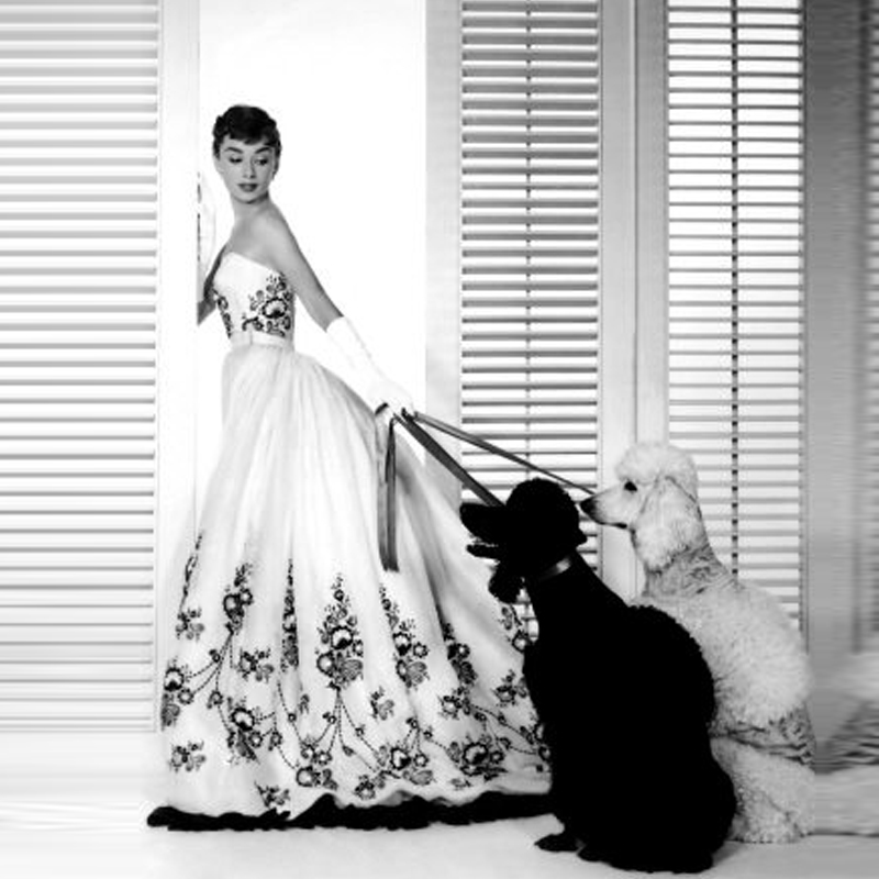 Audrey Hepburn Black and White Classical Stunning Embroidery Wedding ...