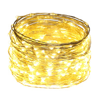 100Ft 30M Gorgeous Led String Lights 300LED Silver Wire Starry String Lights For Christmas Parties Wedding