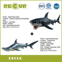 2 Pcs Lot Recur Hammerhead Shark Great White Shark Sea Life Model PVC Hand Painted Marine