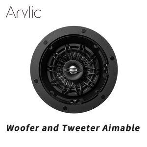 Haut-parleur de plafond de 5.25 pouces avec graves pivotants et rotatifs et tweeter (chacun)