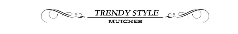TRENDY STYLE (2)
