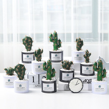 Nordic Simulated Cactus Potted with Multi-fleshed Column Decoracion Fake Plants Garden Decoration Greenery Artificial