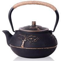 Japanese Cast Iron Teapot Kettle with Stainless Steel Infuser Strainer Plum Blossom 30 Ounce ( 900 ml )