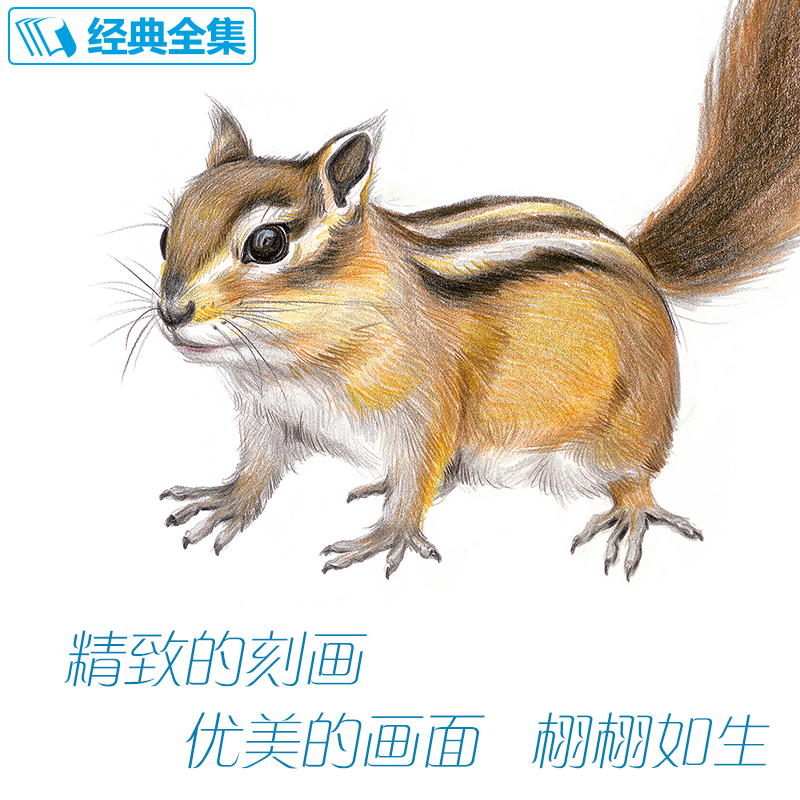 New arrivel Colored pencil Drawing tutorial art book 20 kinds of animals super detailed color lead hand-painted tutorial bookNew arrivel Colored pencil Drawing tutorial art book 20 kinds of animals super detailed color lead hand-painted tutorial book