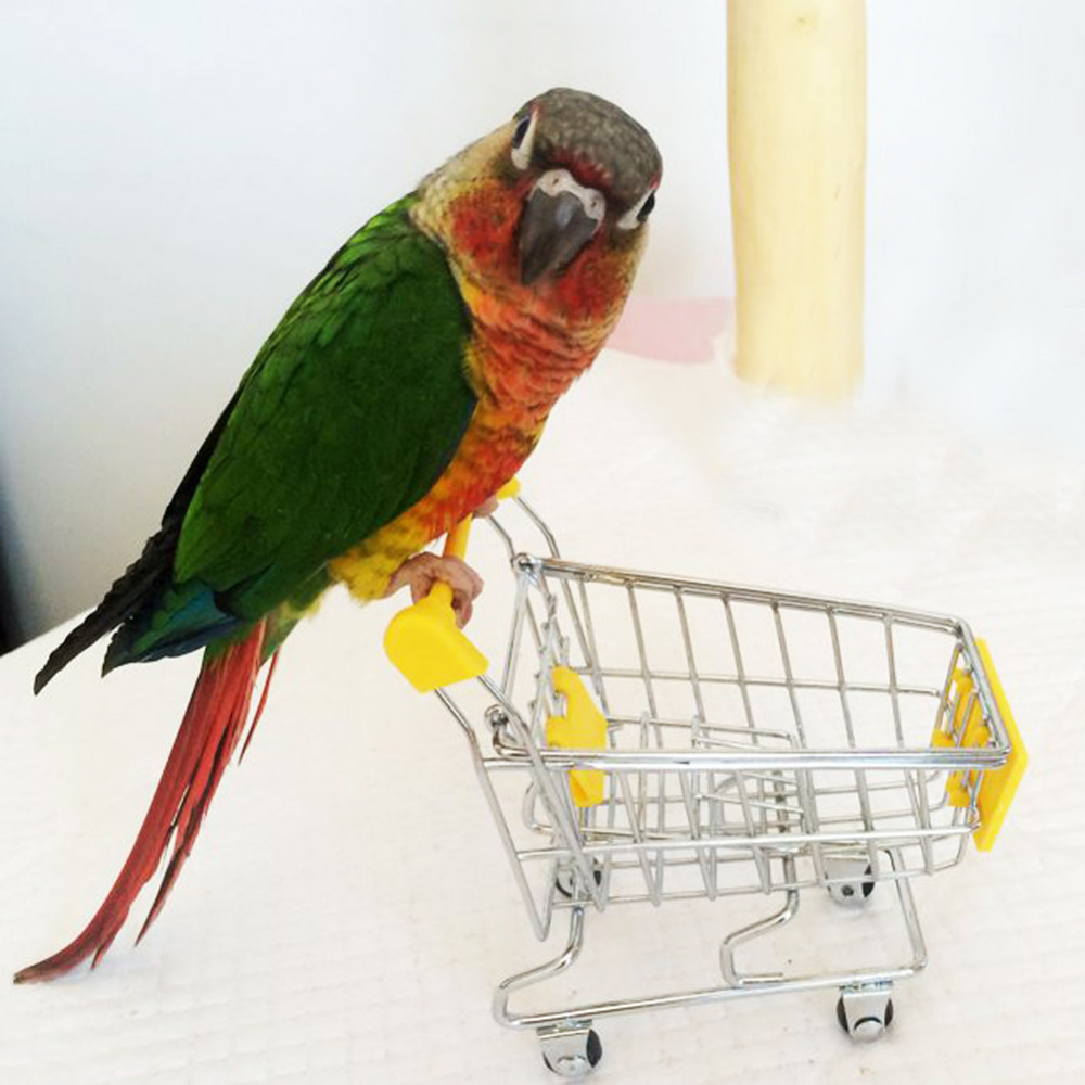 Hot Sale Pet Cat Parrot toy bird Supermarket Shopping Cart shopping trolley Kids Growth Box Funny Toys for birds Hamster spülbecken sieb