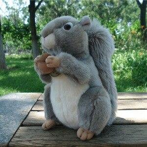 Милая мультяшная белка, плюшевая игрушка, около 22 см, мягкая кукла, детская игрушка, подарок на день рождения h0916