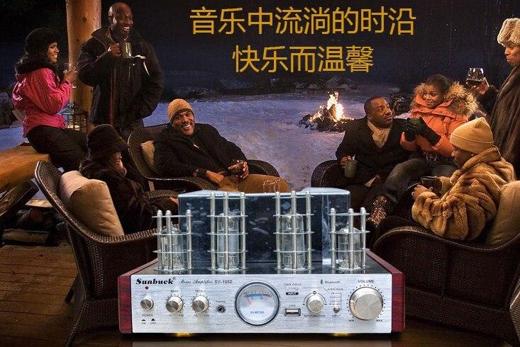 Электронные трубки Мощность Усилители домашние Hi Fi стерео аудио Усилители домашние усилителей Поддержка USB CD Bluetooth аудио компьютер 220 В
