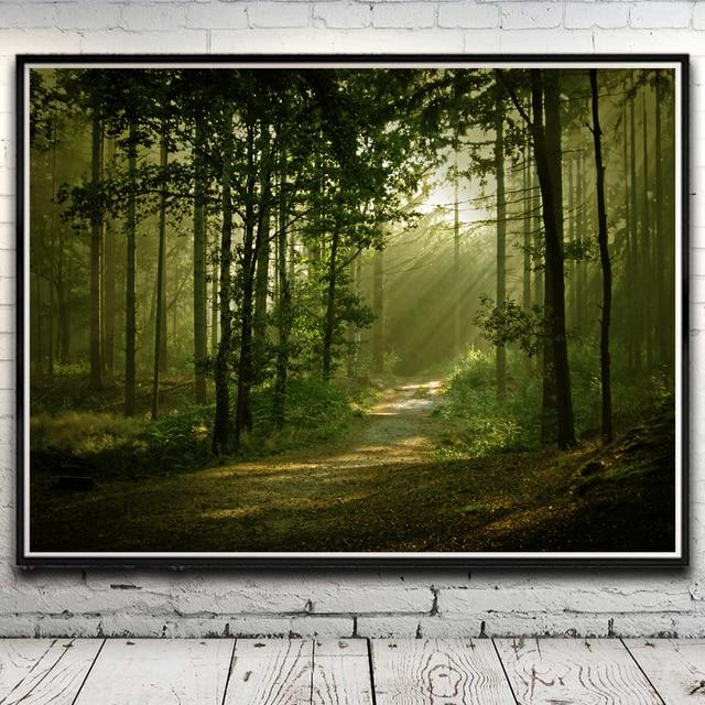 Nature Forest Trees Grass Sunshine Landscape Art Silk Poster Home ...