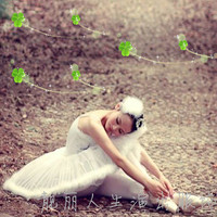 Ballet dress Adult ballet veil costumes swan dance skirt feather Noble Ballet Tutu Adult Professional Swan Lake Dancewear