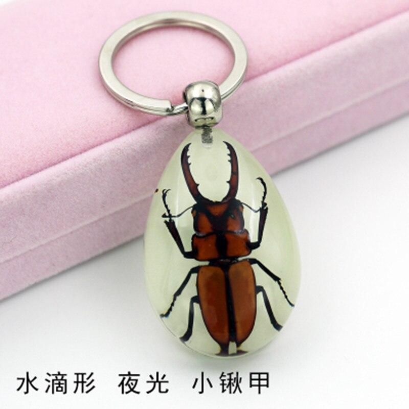 1 шт., образец насекомых, искусственный Янтарный автомобильный брелок, настоящая капля, sScorpion, паук, зеленое ювелирное изделие в виде жука, таксидермия, подарочные аксессуары
