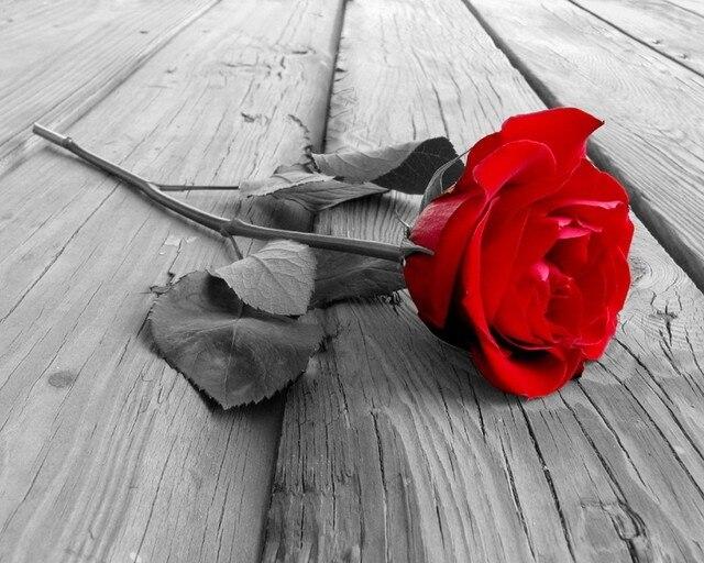 Новый алмаз мозаика алмаз вышивка бусины любовь красная роза на полу цветы алмазы вышивка маслом ручная комплекты
