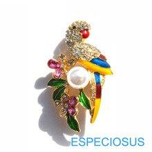 Элегантная булавка стразы брошь попугай окрашенный золотой цвет жемчуг Жираф женский нагрудный штырь многоцветный Дамская одежда подарки ювелирные изделия