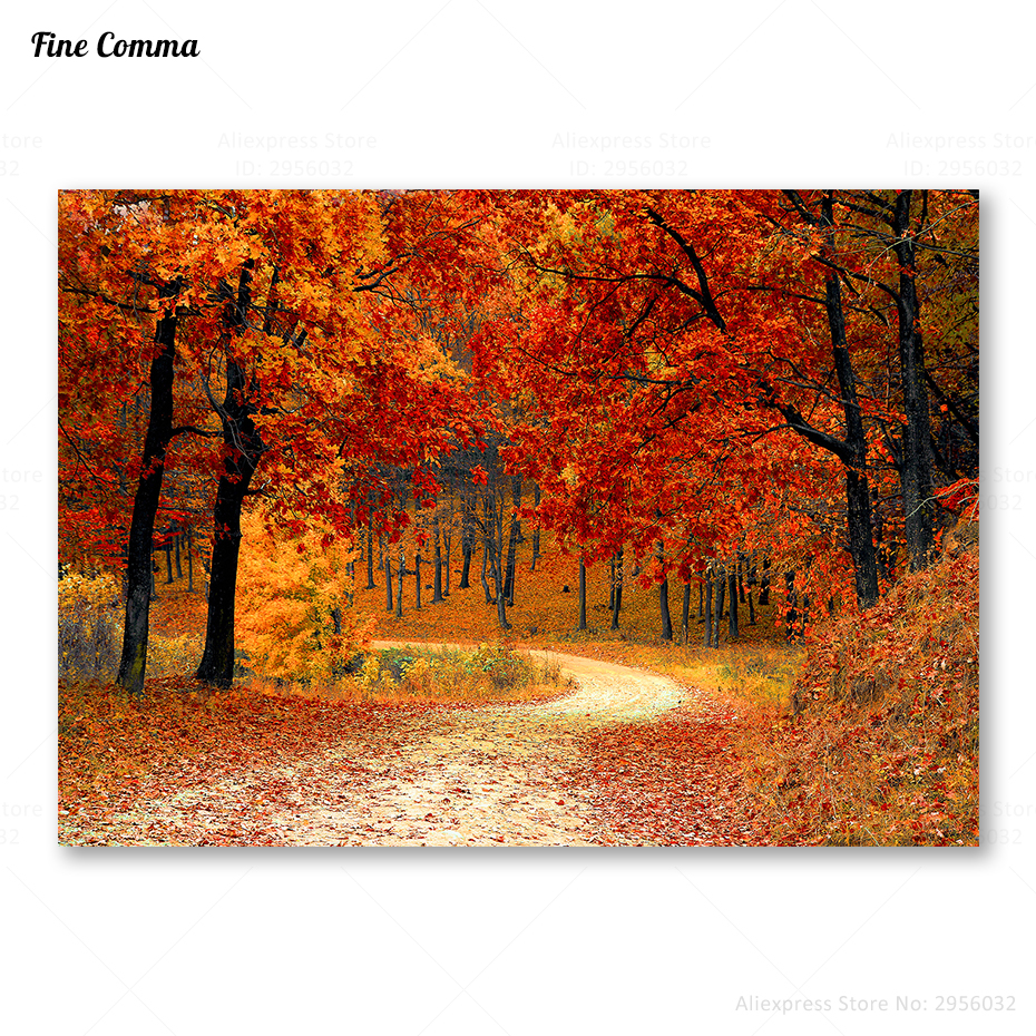 AUTUMNAL TREES ART PRINT Nature Red Orange Yellow Photograph Decor Wall Picture