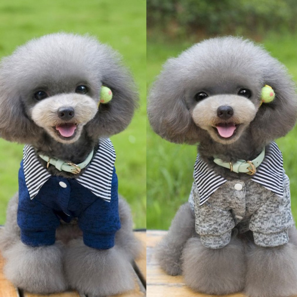 Small Dog Costume Autumn Winter Dog Clothes Chihuahua Poodle Puppy Clothing Warm Pet Dog Jumpsuit Coat Jacket Outfit Dropship Volume Large Home & Garden