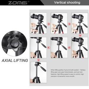 Image 5 - ZOMEI Q111 Professionalเดินทางแบบพกพาอลูมิเนียมขาตั้งกล้อง & PANสำหรับSLR DSLRกล้องสี