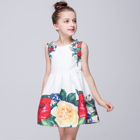 3 7 Years Retail New Style Spring Summer Baby Girl Print Flower Girl Dress For Wedding