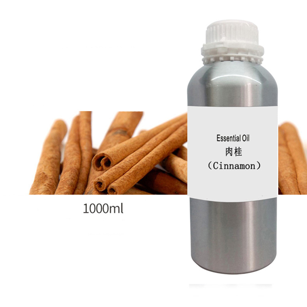 manufacturer of cinnamon essential oil Authentic plants imported natural cinnamon oils Cinnamon extract Beauty salon