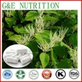 Suministro de 100% Cápsulas de Resveratrol Natural/Gigante Knotweed Extracto Cápsulas, 500 mg x 200 unids