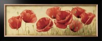 Modern art paintings flower Poppies Grace oil on canvas home decor handmade High quality