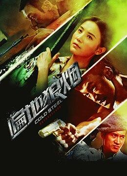《遍地狼烟》2011年中国大陆动作,爱情,战争电影在线观看