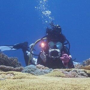 Image 5 - PULUZ จับถาดอลูมิเนียม Stabilizer RIG สำหรับถ่ายรูปใต้น้ำดำน้ำถาดสำหรับ GoPro DSLR สมาร์ทโฟน