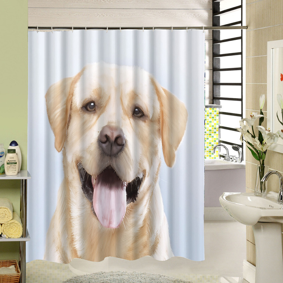 bulldog royalty or bathing photo towel cap shower to ready photos dog free a images spon and brush bath wearing french have stock