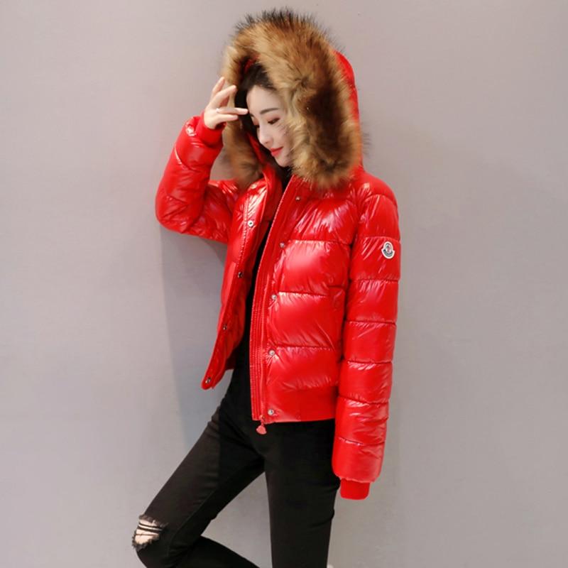 Bas Coton En Noir Royal Rembourré Col Le Manteau Veste New De Femmes Wertuiop Fourrure D'étudiant Bright Grand rouge bleu 2019 Vers D'hiver Court 8OPwkXn0