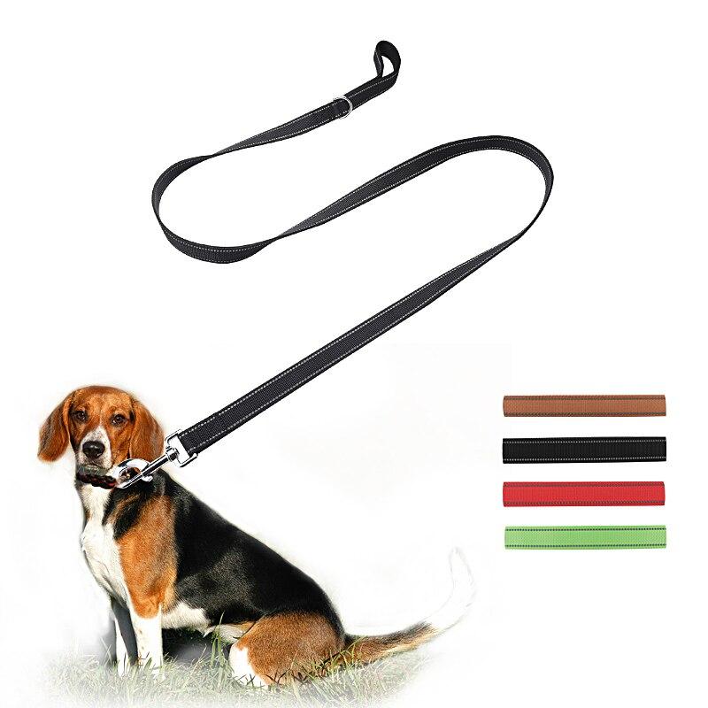 картинки поводок на собаке его территории растут